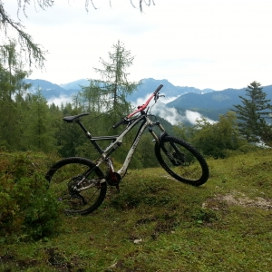 stumpjumper elite fsr